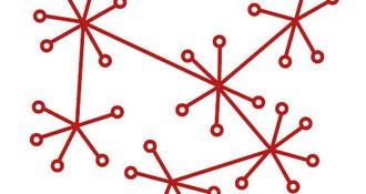 Alumni Networks